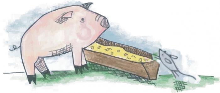 Производство кормов бизнес план что нужно для бизнес плана