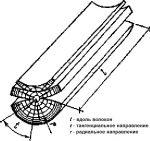 Древесины таблица прочности – Физико-механические свойства различных пород древесины (по ГОСТ 4631-49), Таблица. Объемный вес. Предел прочности. Модуль упругости.
