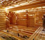 Деревья хвойных пород – Хвойные породы деревьев – описание свойств и особенностей. Использование хвойных пород древесины в строительстве. древесина