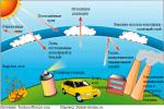 Какие экологические – Экологические проблемы планеты. Глобальные экологические проблемы планеты: примеры
