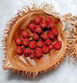 Что такое аннато – Аннато – полезные свойства и калорийность, применение и приготовление, в чем польза и вред продукта аннато – приправы, соусы, специи