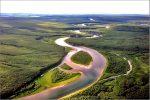 Сообщение леса коми – Девственные леса Коми | Очевидное невероятное