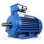 Электродвигатель аир 71 в4 – Купите общепромышленный электродвигатель АИР 71В4 с двигателем 0.75 в Москве. общепромышленные двигатели — АИР 71 оптом и в розницу.