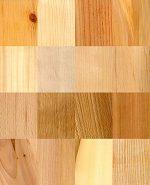 Основные породы древесины – Наиболее часто используемы породы древесины – их краткие характеристики и отличия