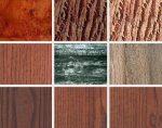 Хорошее дерево – Достоинства и недостатки древесины разных пород для производства мебели из массива