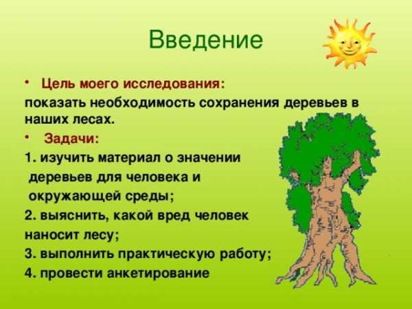 Доклад на тему что нам дает лес 3086