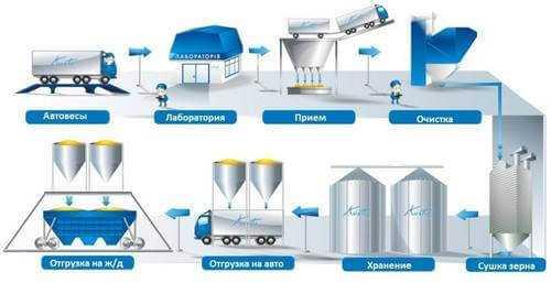 Технологический процесс работы элеватора вал зернового и колосового элеваторов нива 60007